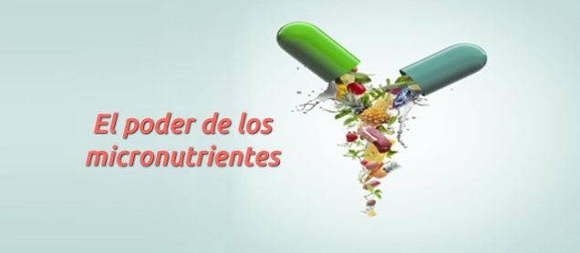 Qué son los micronutrientes, cuál es su poder y dónde hallarlos.
